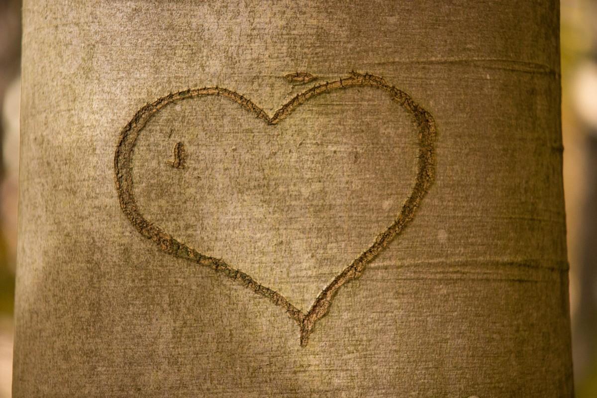 heart-1787863_1920